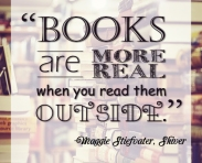"""Books are more real when you read them outside."" Maggie Stiefvater (Really, it's me), Shiver"
